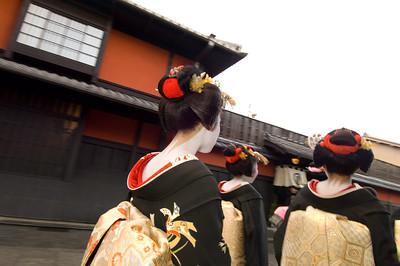 Gion District, Maiko girls (trainee geishas) passing Ichiriki restaurant, Kyoto, Japan