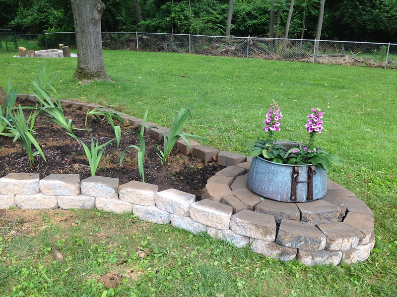 (Older pic) Cauldron with dalmatian foxgloves in it. If they don't work out, we'll plant something different next year.