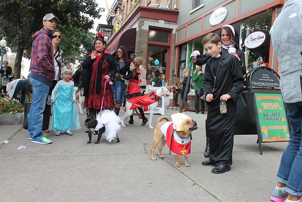 11th annual Howl-O-Ween Canine Costume Parade