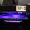 peabody121018-Owen-3D ornimate making01