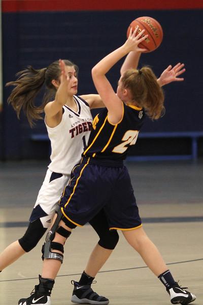 Lynn121118-Owen-girls basketball tech notre dame03