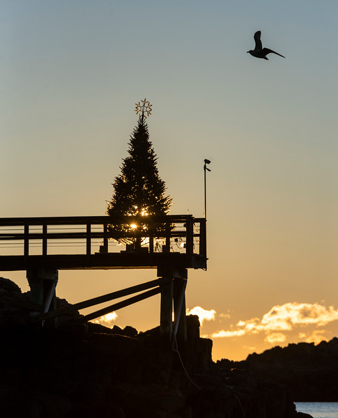 12 25 18 Marblehead Christmas sunrise 3