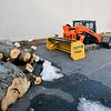 12 29 20 Lynn Central Square trees cut down 1