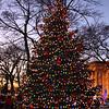 Lynn120418-Owen-tree lighting11