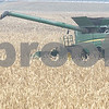 dc.1211.farming01