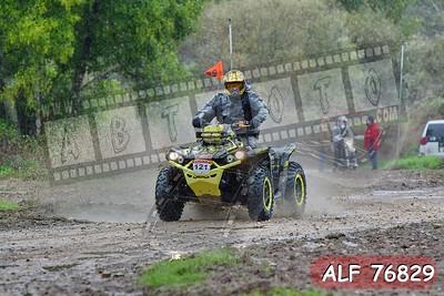 ALF 76829