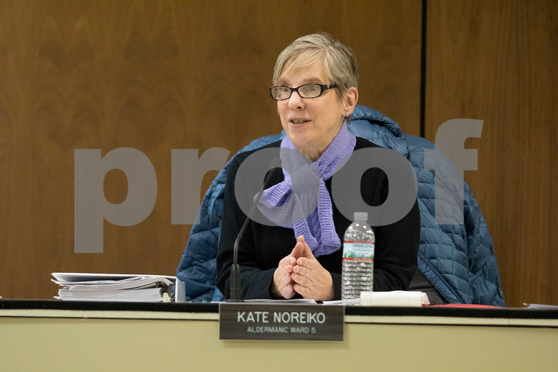 Sam Buckner for Shaw Media.<br /> Kate Noreiko, 5th ward alderman, states that the fuel tax will help drivers by improving roadways at the city council meeting on Monday December 11, 2017.