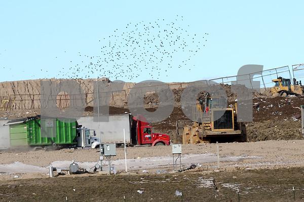 dnews_1214_Landfill_02