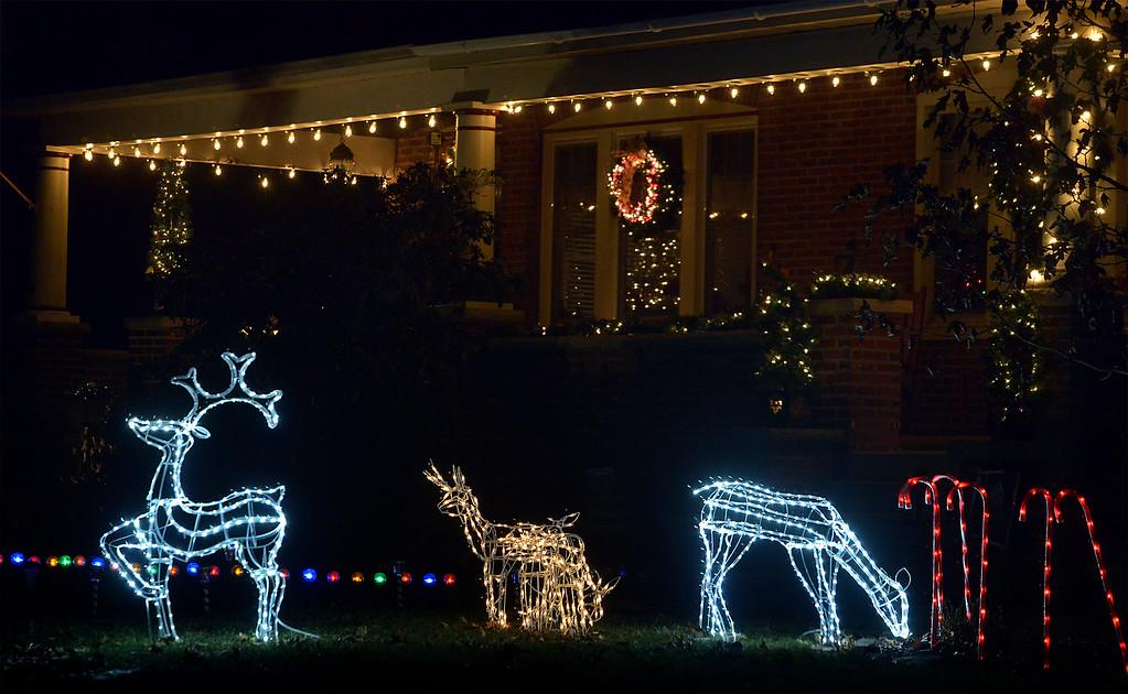 . (Bob Raines-/Digital First Media)  Deer prance on York St., Lansdale Dec. 21, 2017.