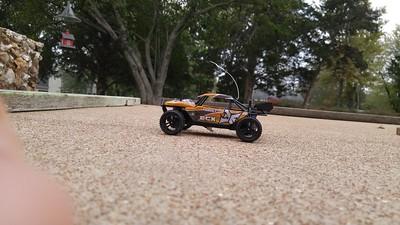 ECX 1:24 Roost Desert Buggy