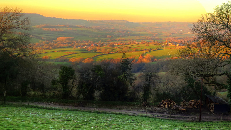 The 'golden hour' has come and the landscape is bathed in gorgeous orange light