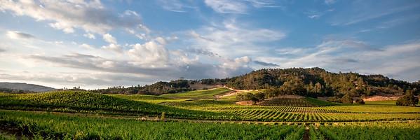 Winery Hills 2