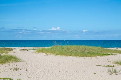 1301 Near Ocean - Ground Shot and Beach Access-29