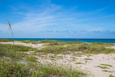 1301 Near Ocean - Ground Shot and Beach Access-30