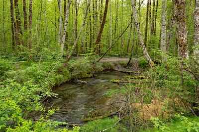 1434 Creek 1