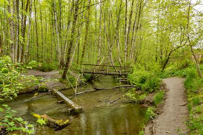 1434 Creek Bridge