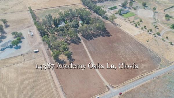 14387 Academy Oaks Ln_2