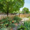 DSC_6005_landscaping-6005