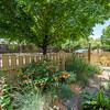 DSC_6006_landscaping-6006