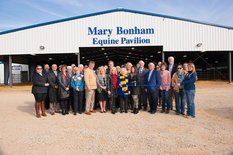 14574-event-Mary Bonham Equine Pavilion-0144