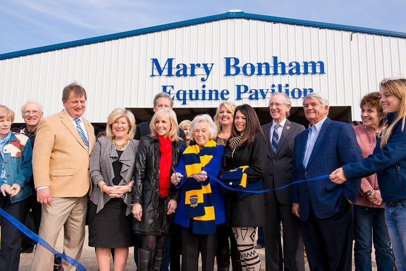 14574-event-Mary Bonham Equine Pavilion-0159