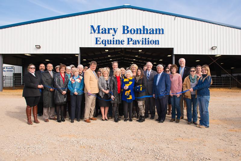 14574-event-Mary Bonham Equine Pavilion-0149