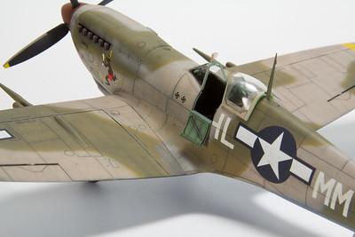 Eduard Spitfire Mk VIII 'Lonesome Polecat'