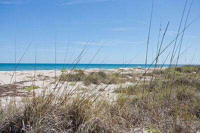 1496 Treasure Cove - January 25, 2012-32