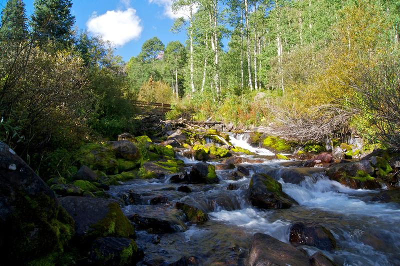 Maroon Creek spills through the dense woods on its way toward Maroon Lake; Colorado Elk Range.