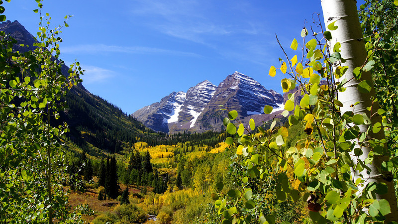 The aspens begin to turn; Maroon Bells Wilderness, Colorado Elk Range.