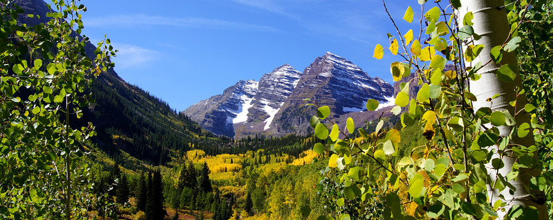The aspens begin to turn (panoramic); Maroon Bells Wilderness, Colorado Elk Range.