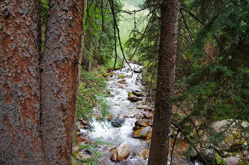 Snowmass Creek rushes along the Maroon Snowmass trail; Colorado Elk Range