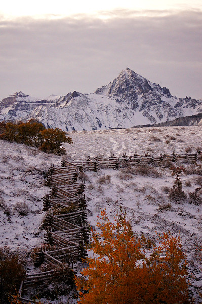 Autumn's first snow on an aspen bole fence at sunrise; Dallas Divide and Mount Sneffels, Colorado San Juan Mountains.