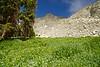 Lush alpine grass and wildflowers contrast the stark north face of Little Bear Peak; Colorado Sangre de Cristo Range