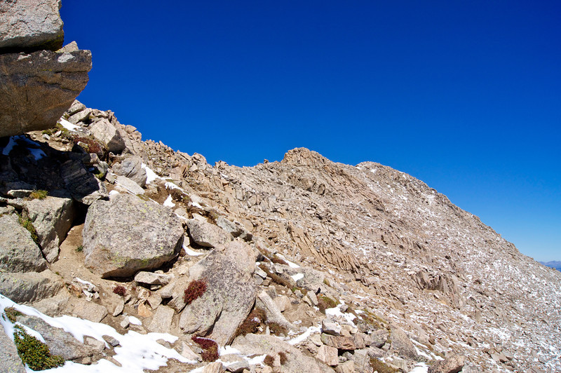 The final ridge crest to the summit of Mt. Massive (14,421 ft.); Colorado Sawatch Range.