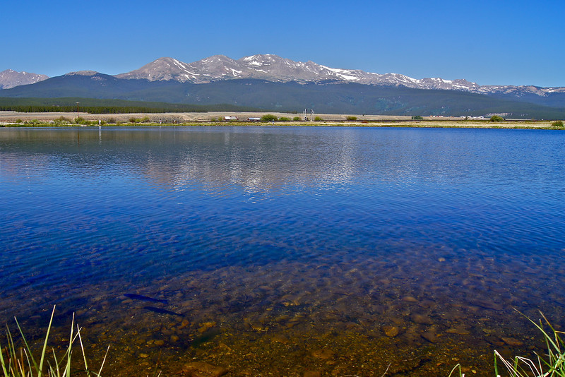 The clear waters of Crystal Lake reveal trout in the foreground and a reflection of Mount Massive in the distance; Colorado Sawatch Range.