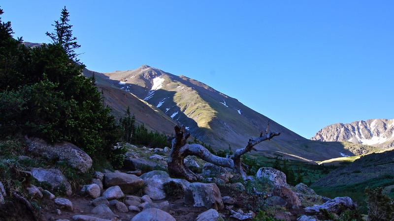 Morning sun shines on the summit of Mt. Belford above the Missouri Gulch trail; Colorado Sawatch Range.