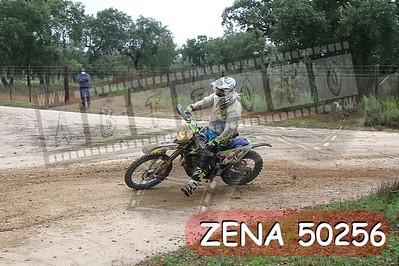ZENA 50256