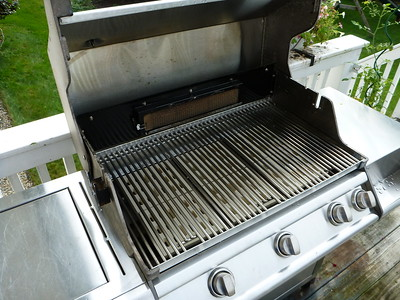 15 Year old grill