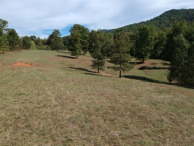 Middle Field of Tract 1