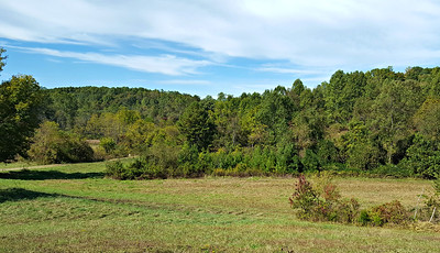 Lower Field on Tract 1