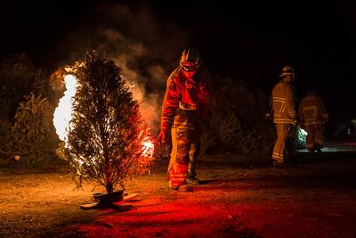 (1/5/18) Solvang Tree Burn