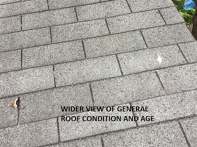Wider view of general roof condition and age.