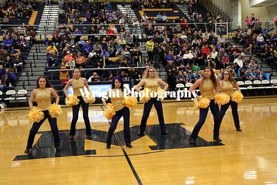 '16-'17 MHS Dance Team (#2)