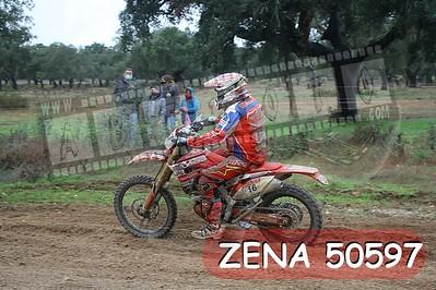 ZENA 50597