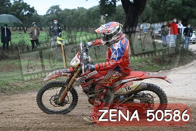 ZENA 50586