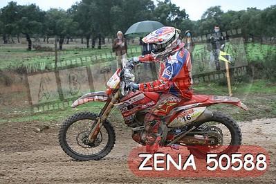 ZENA 50588
