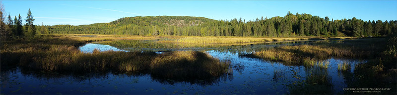 Algonquin Pano<br /> Raymond's Ontario Nature Photography Tours<br /> samsung SM-N910W8<br /> 1/422s f/2.2 at 4.6mm iso 40