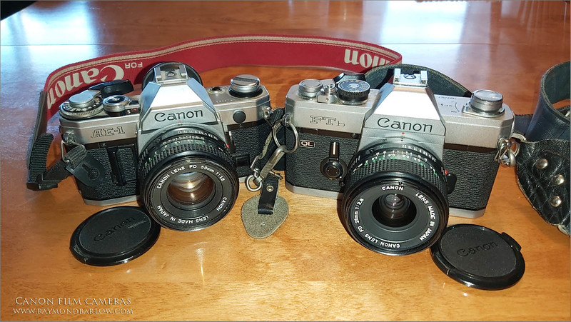 Thanks to my nephew Brian Koudys, a couple of my old film cameras have returned home!  New batteries, and a use wide-angle lens for one of them, and they are good as new!  I have just a little cleaning that needs be done.<br /> <br /> Thanks Brian!  What a thrill to be messing around with these old cameras, so I am preparing to buy some film, and give them a go!  <br /> <br /> I bought the FTb around 42 years ago in Toronto, with Brian's cousin George Coker helping me make a deal.,  that alone is a great memory.  It was Brian's dad Marty Koudys (Canon F1 user) and my older brother Geoff Barlow (Canon FTb user) who got me going with photography back then.  In fact, I bought my first camera before I bought my first car at 19! <br /> <br /> Marty and Geoff were both keen photographers, Marty won a Canadian National award for one of his underwater photos, as he was a Scuba diver and had all the underwater gear for his F1.  I still remember the photo he won the award with.<br /> <br /> Both of them, two of the best brothers I could ever dream of, though Marty is my brother-in-law, I have known him since I was less then a year old.<br /> <br /> Great memories., life is good.<br /> <br /> Thanks again Brian!  Imagine, Brian saved these 2 cameras all these years, knowing I would love to have them back some day.  So much appreciated!<br /> <br /> I am so lucky!