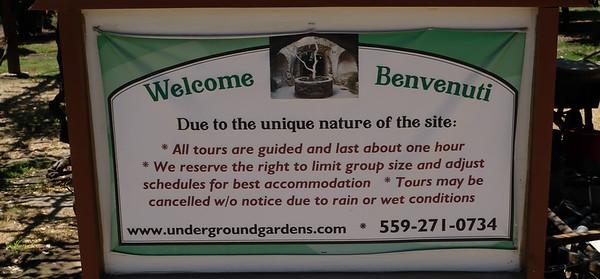 180623 UnderGround Gardens-0348